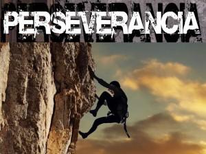 Perseverancia - Julio Camacho